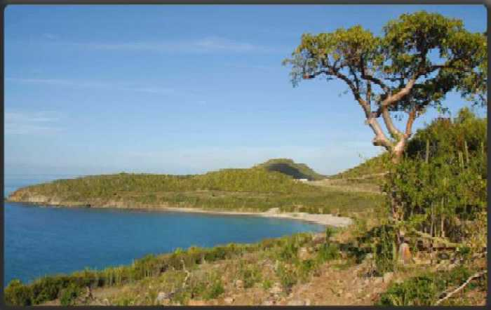 VENTE TERRAIN 1 pice - SAINT MARTIN