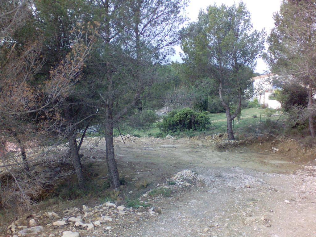 Land 739 m² in the heart of a pine forest, to see!