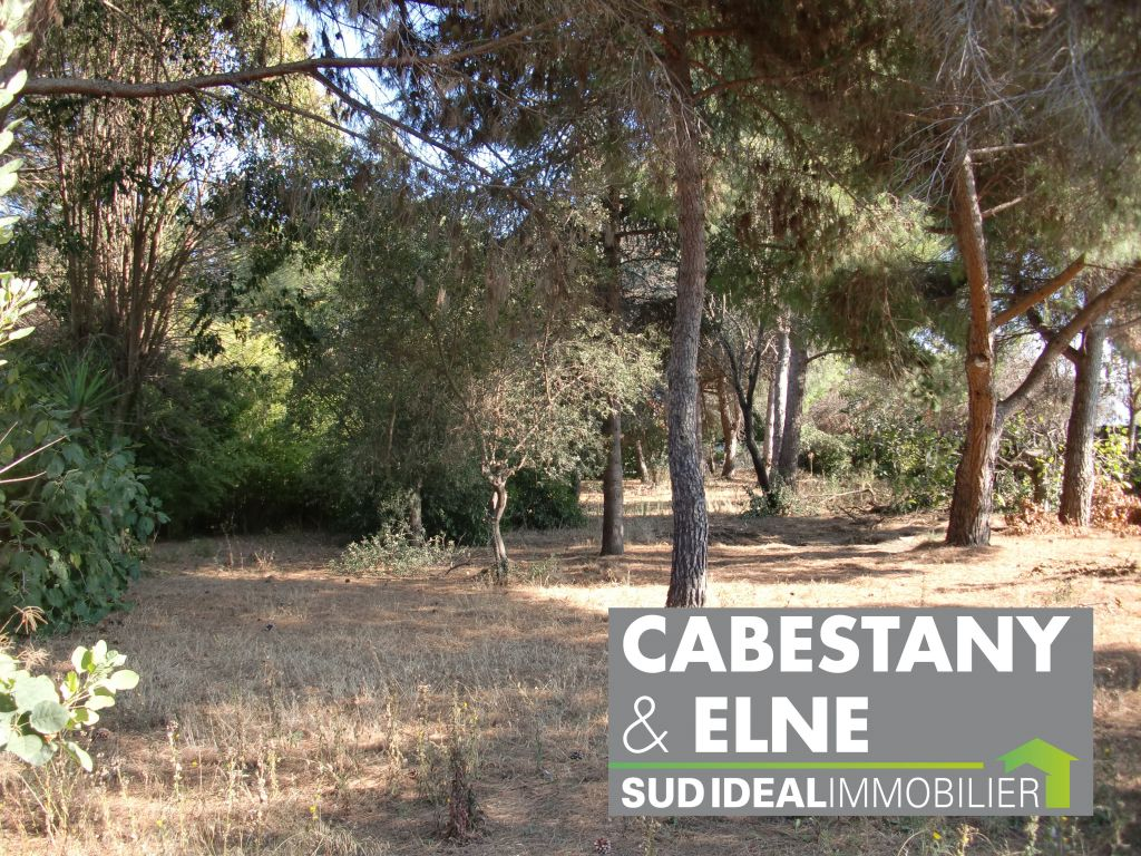 CABESTANY TERRAIN VIABILISE 4 FACES 516 M²