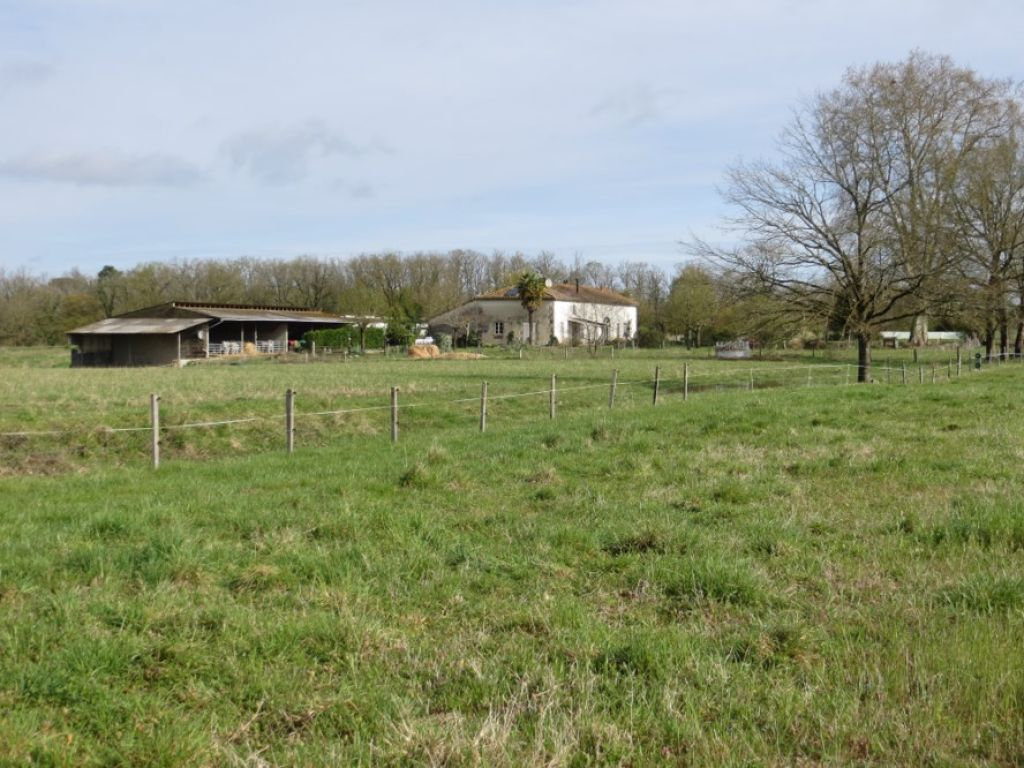 Property with 33 hectares - ideal Cattle or Horse breeding