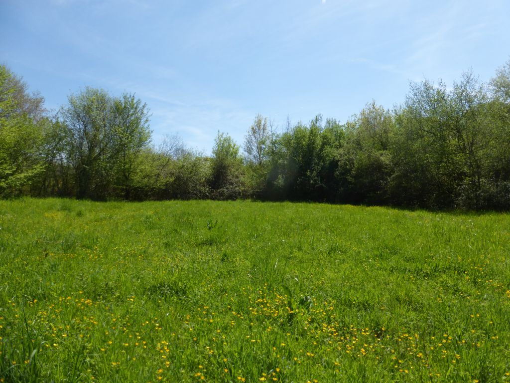 Ecological property in a privileged setting with more then 28 acres of land