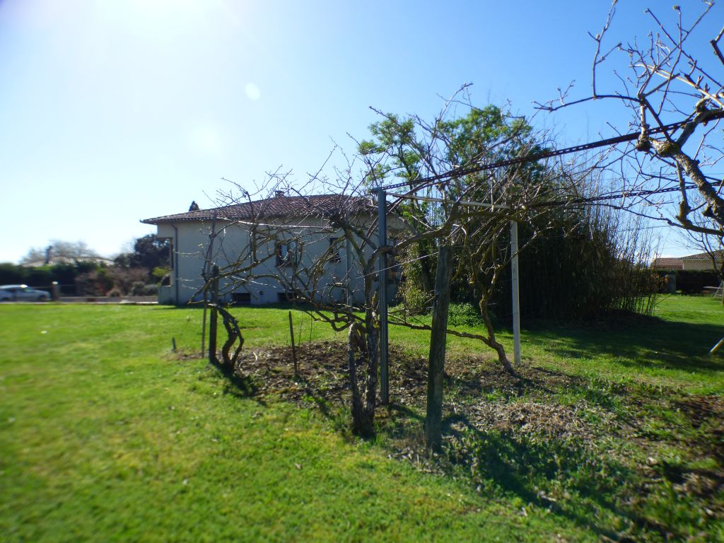 House T4 with land planted with fruit trees